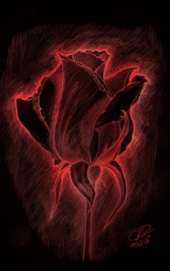 Devil_Rose_by_RexKing